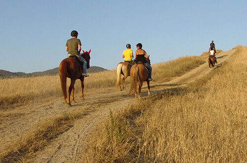 horseriding-tour-tuscany-3