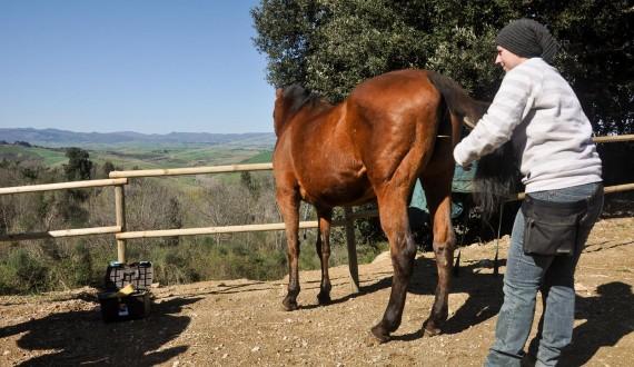 008-Riding-Tuscany