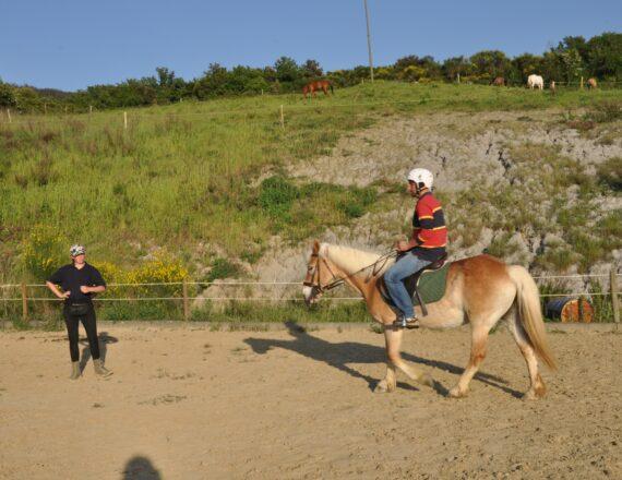 lezione.cavallo (29)